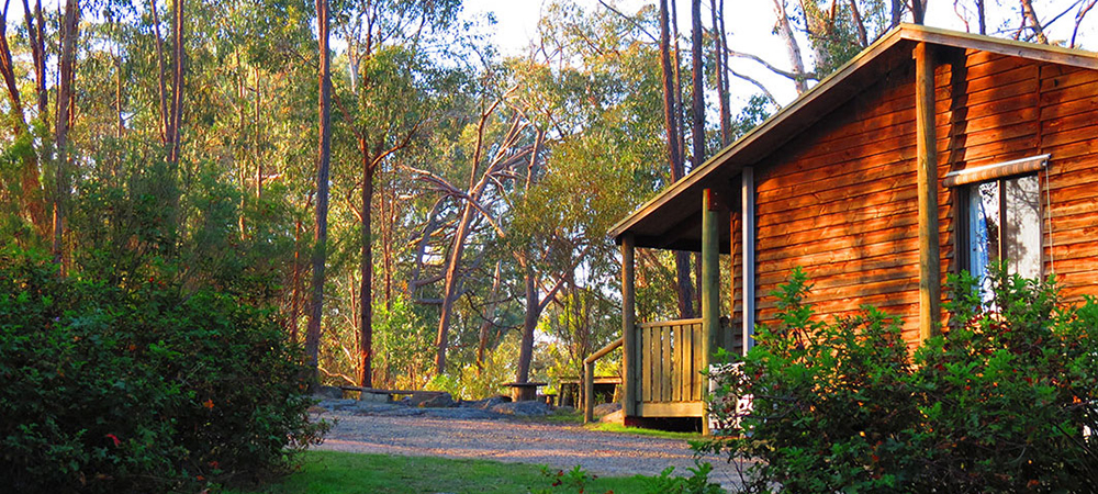 Woolshed Cabins 01